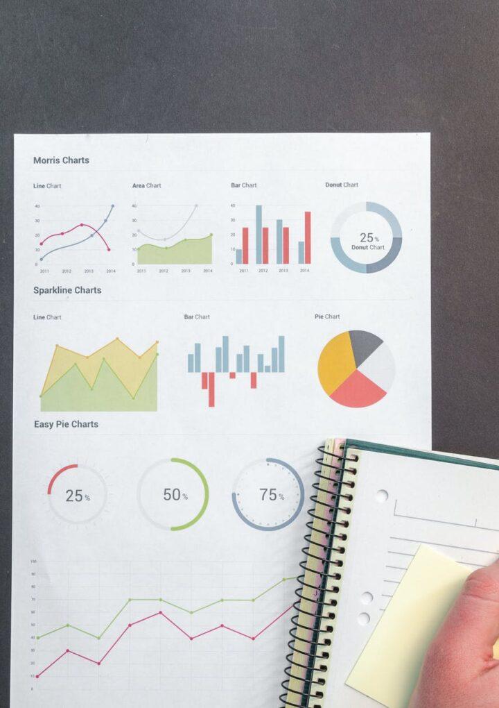 How A Digital Marketer Ensure High Rank On SERP?
