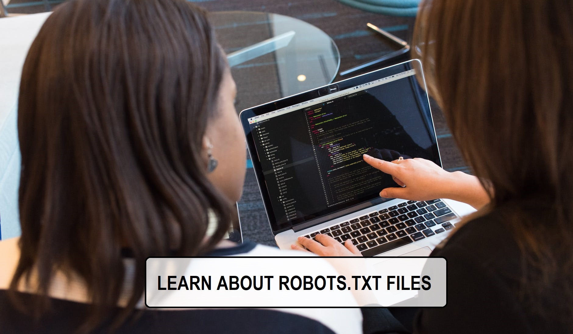 LEARN ABOUT ROBOTS.TXT FILES